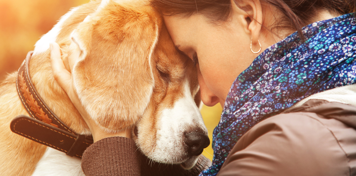 Pet therapy for depression and anxiety